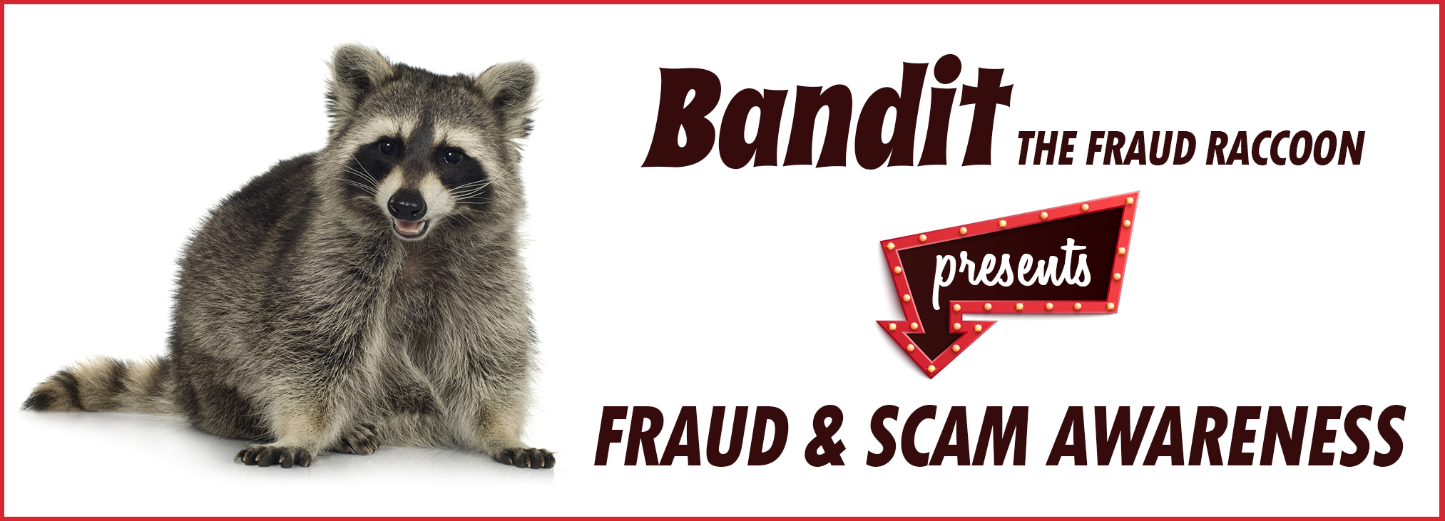 Bandit the Fraud Raccoon presents fraud and scam awareness